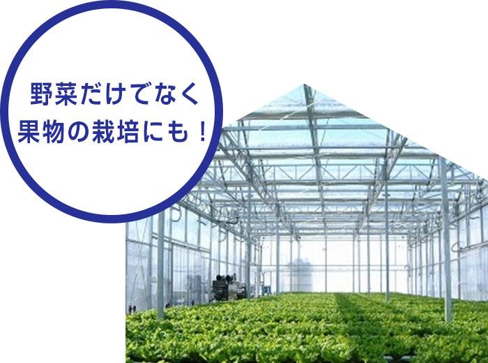 野菜だけでなく果物の栽培にも!