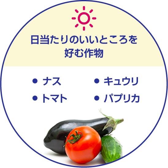 日当たりのいいところを好む作物/・ナス・トマト・キュウリ・パプリカ