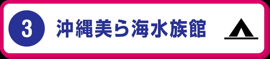 (3)沖縄美ら海水族館