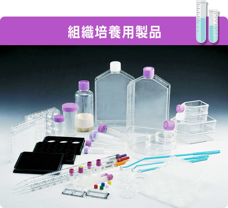 組織培養用製品