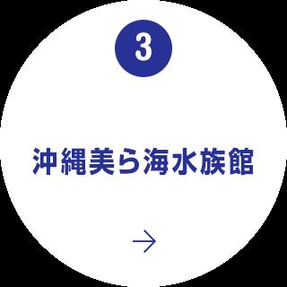3. 沖縄美ら海水族館